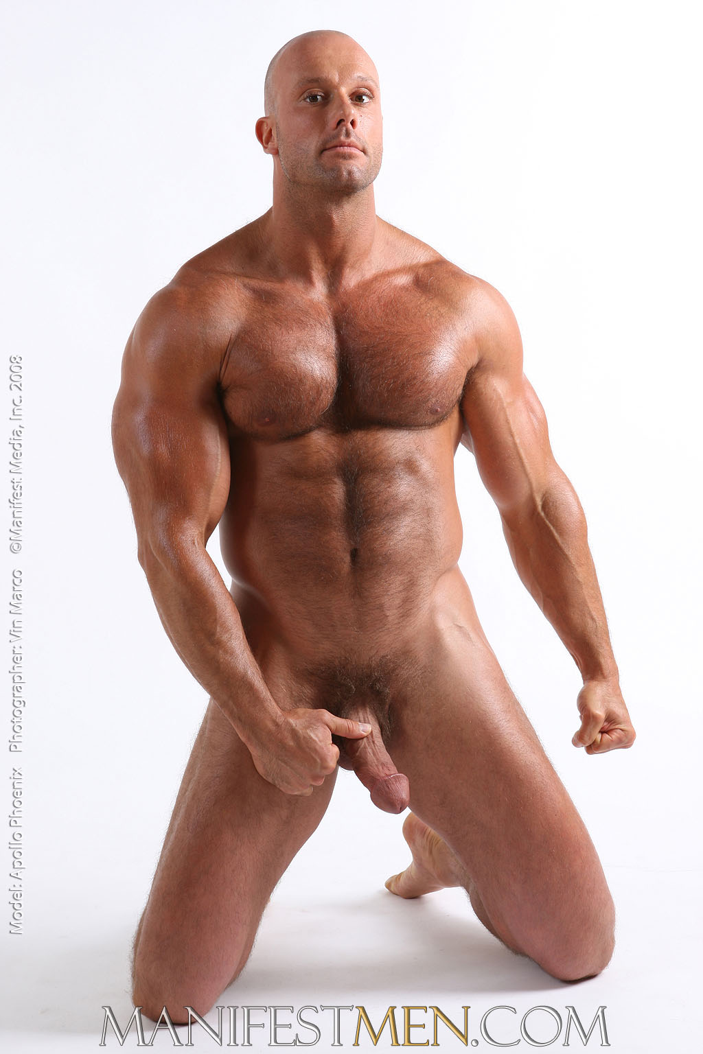 Gay Hairy Muscle Stud