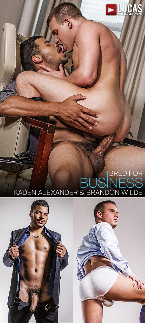 "Lucas Entertainment: Kaden Alexander fucks Brandon Wilde raw in ""Gentlemen 18: Bred for Business"""