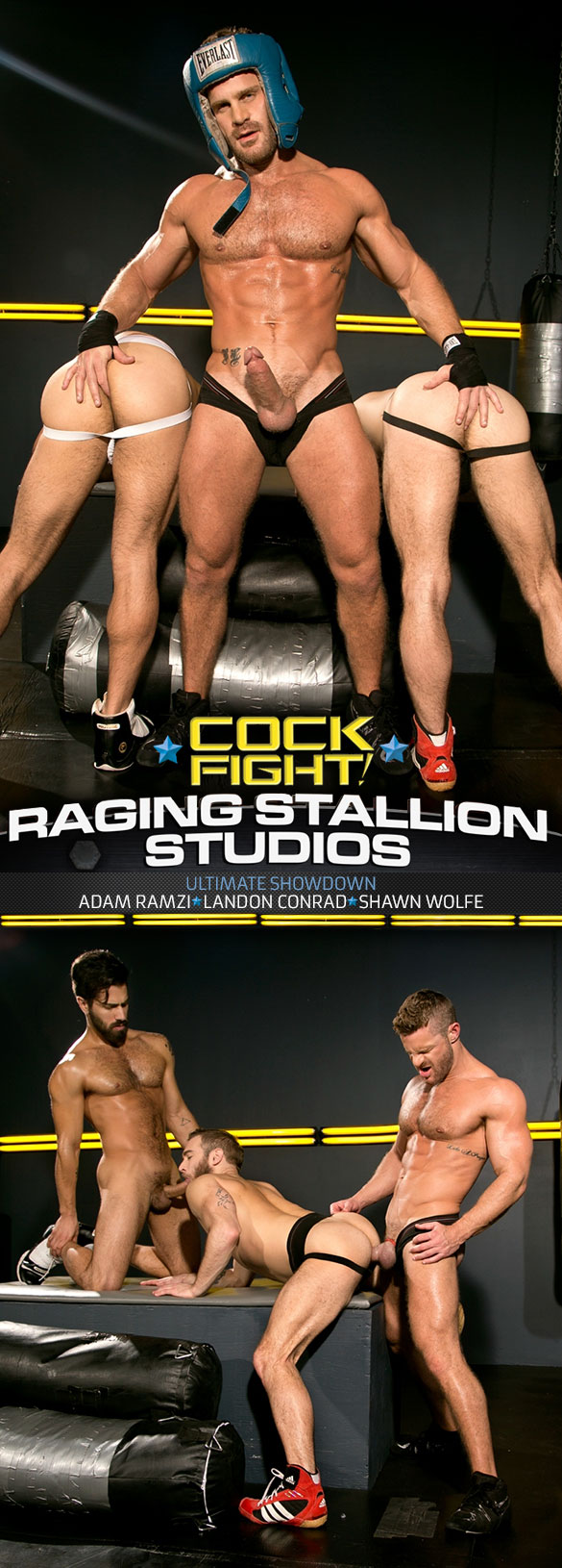 "Raging Stallion: Shawn Wolfe, Adam Ramzi and Landon Conrad in ""Cock Fight!"""