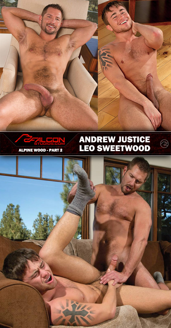 "Falcon Studios: Andrew Justice fucks Leo Sweetwood in ""Alpine Wood, Part 2"""