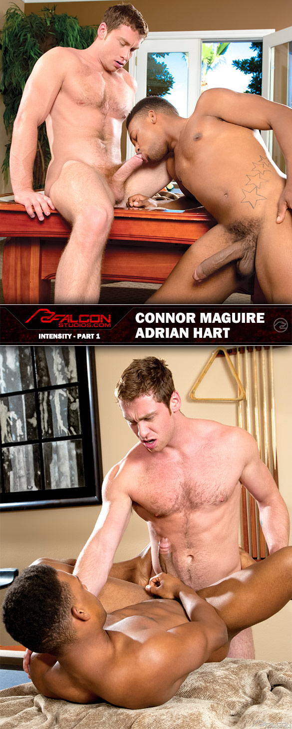 "Falcon Studios: Connor Maguire fucks Adrian Hart in ""Intensity, Part 1"""
