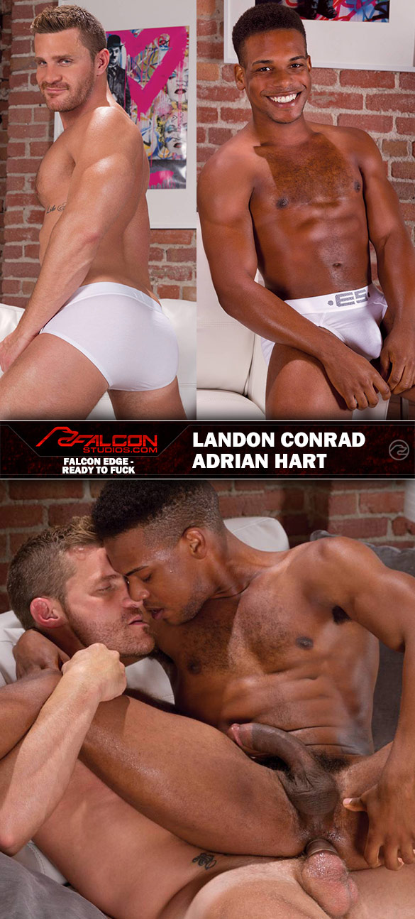 "Falcon Studios: Landon Conrad pounds Adrian Hart in ""Ready To Fuck"""