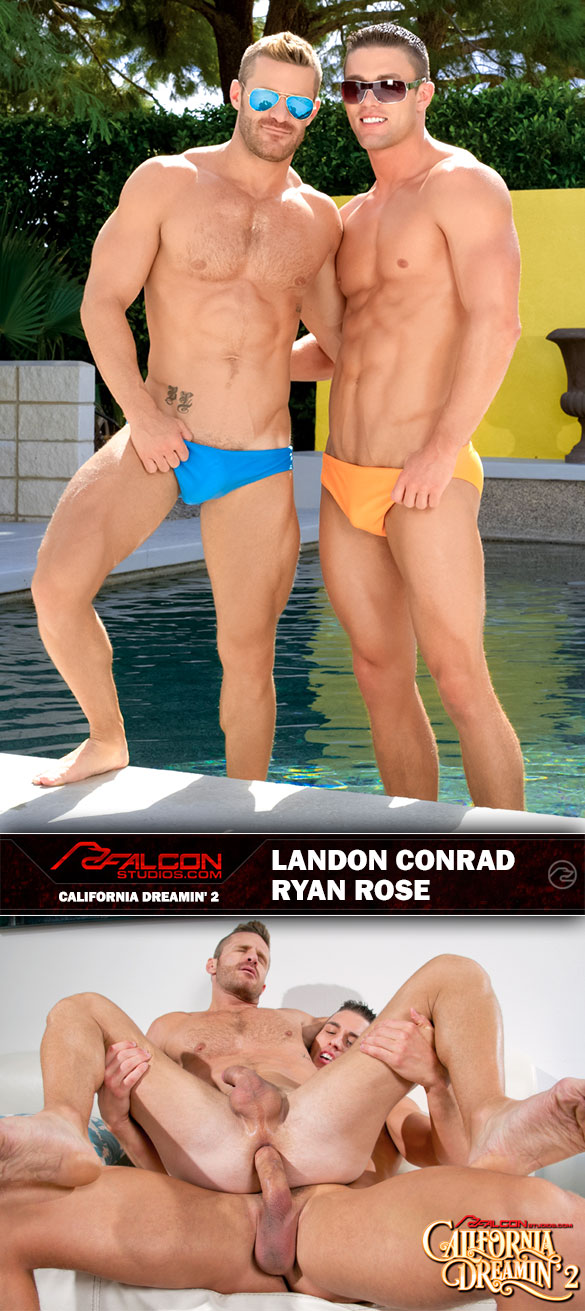 Ryan-Rose-Landon-Conrad-Falcon-1