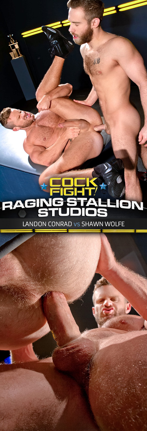 "Raging Stallion: Landon Conrad and Shawn Wolfe pound each other in ""Cock Fight!"""